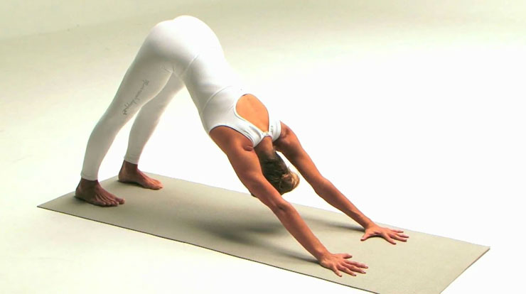 ashtanga yoga dani sa