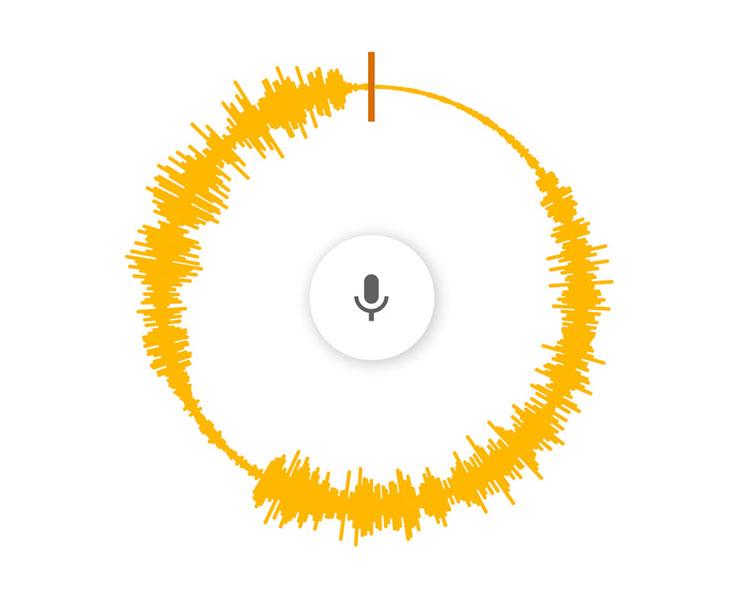voice spinner