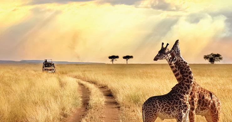 woraway in uganda